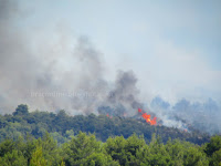požar Mirca slike otok Brač Online