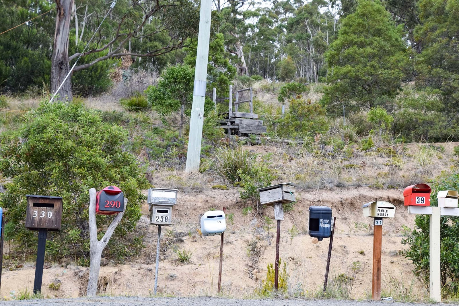 letter boxes on bruny island
