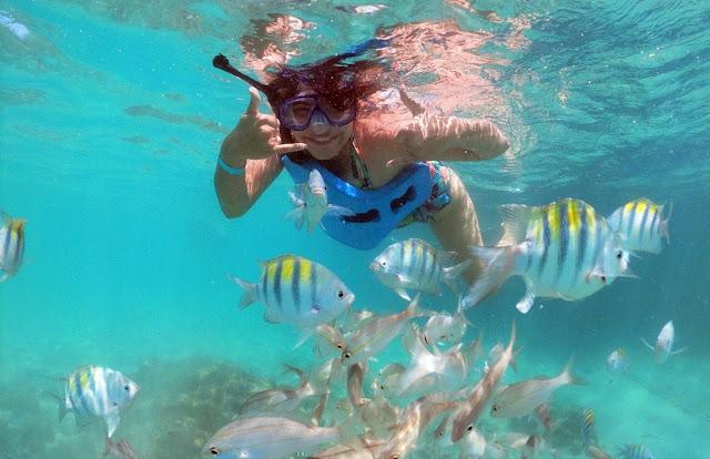 mulher jovem de snorkel mergulhando em um recife de corais