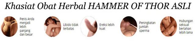 khasiat hammer of thor asli, obat pembesar alat vital pria, pembesar alat vital pria alami, pembesar alat vital pria permanen, hammer of thor original