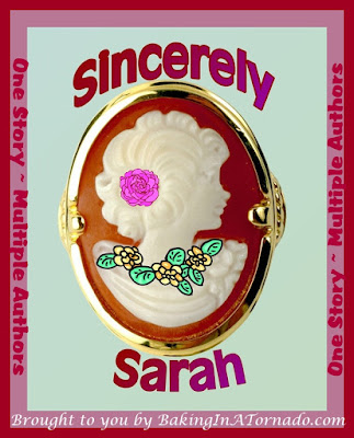 Sincerely Sarah, a Progressive Story Project: One cohesive piece of fiction written by multiple bloggers, each contributing their voice to the story | brought to you by www.BakingInATornado.com | #MyGraphics #fiction #blogging