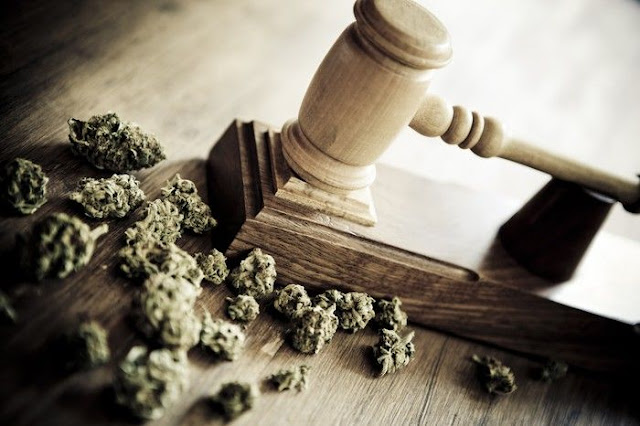 Cannabis and Consequences from a Criminal Defense Perspective