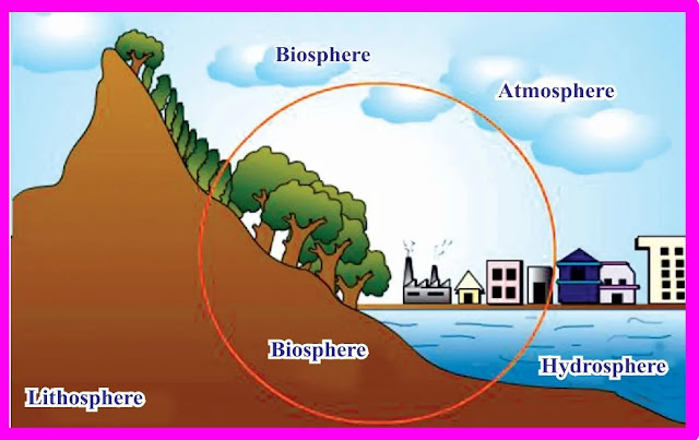 9th Class Science Notes in English chapter 14 Natural Resources