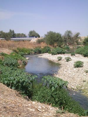 Arroyo de la Vega