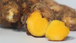 Ramuan Herbal Untuk Stamina Burung Merpati