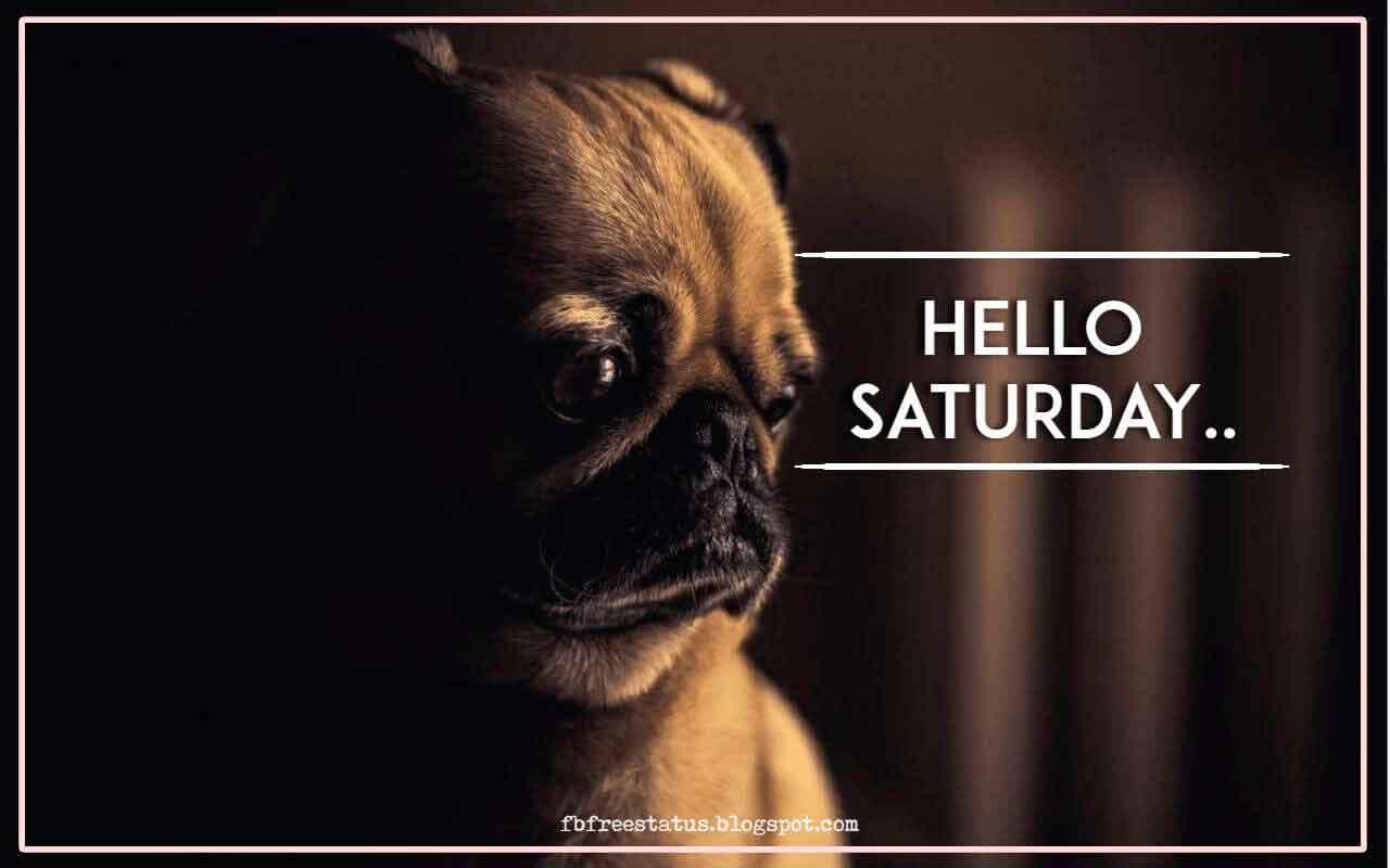 Hello Saturday.