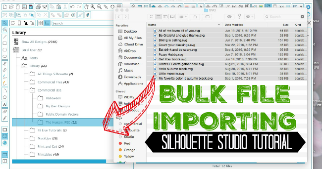 Bulk Importing Files Into Silhouette Studio Library