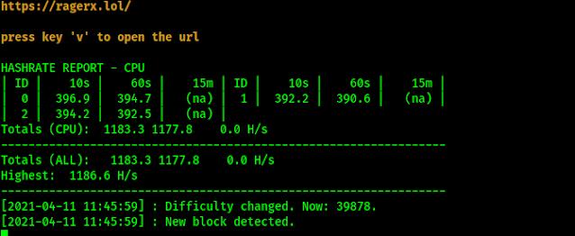Monero mining staretd on Kali Linux