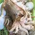 Điểm danh 5 món ngon từ bạch tuộc