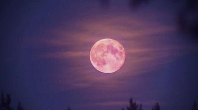 Super Lua Rosa/Reprodução