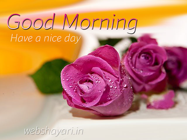good morning background photo HD images download free