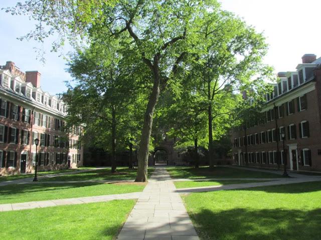 8. Yale University
