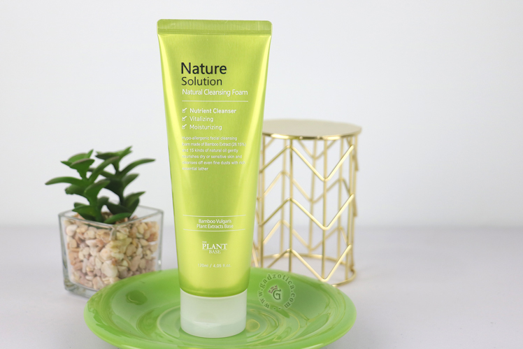 The Plant Base Nature Solutions Natural Cleansing Foam