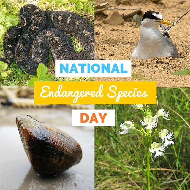 National Endangered Species Day Wishes Pics
