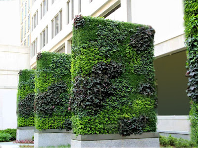 Customer Installed This Vertical Garden To Act As Parameter Wall