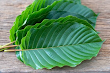 Is Kratom Safe To Consume For Weight Loss?