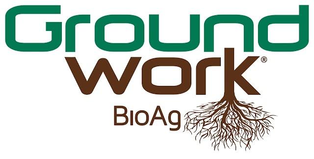 Groundwork BioAg Raises $11 Million to Advance Bioagriculture Globally