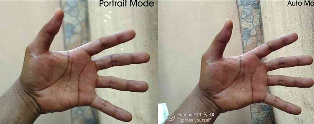 Portrait and Auto Mode Photos Taken With The Infinix Hot S3X Camera