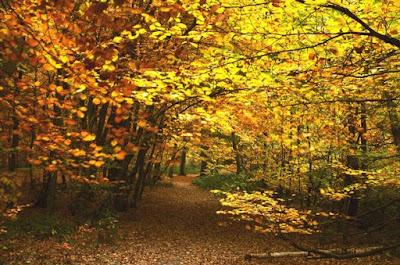 سبتمبر الخريف