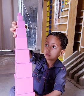 Montessori Pink Towers