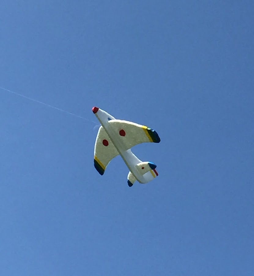 Avion de poliespan en pleno vuelo
