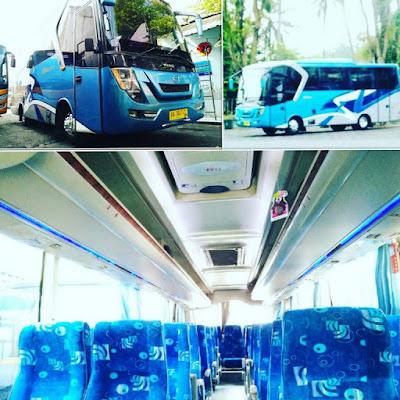 Bus Pariwisata Seat 35 Jogja