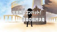 One Piece Episode 219