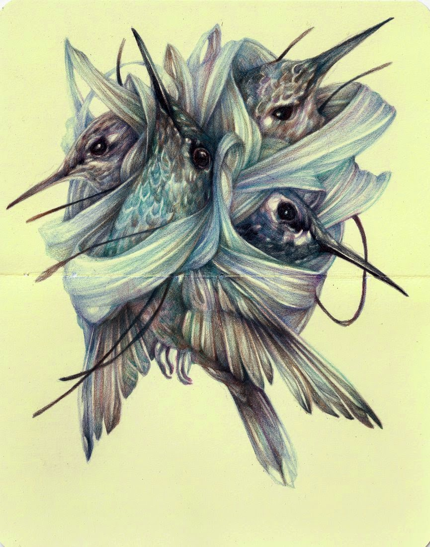 20-Marco-Mazzoni-Surreal-Animal-Drawings-www-designstack-co