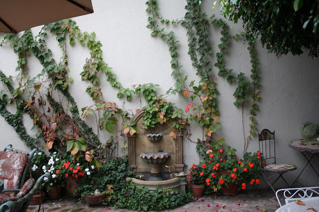 patio fountain, vine covered wall