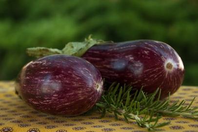 Khasiat dan Kandungan Terung, Sayuran yang Kaya akan Multivitamin