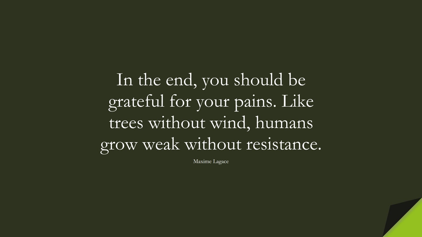 In the end, you should be grateful for your pains. Like trees without wind, humans grow weak without resistance. (Maxime Lagace);  #HappinessQuotes