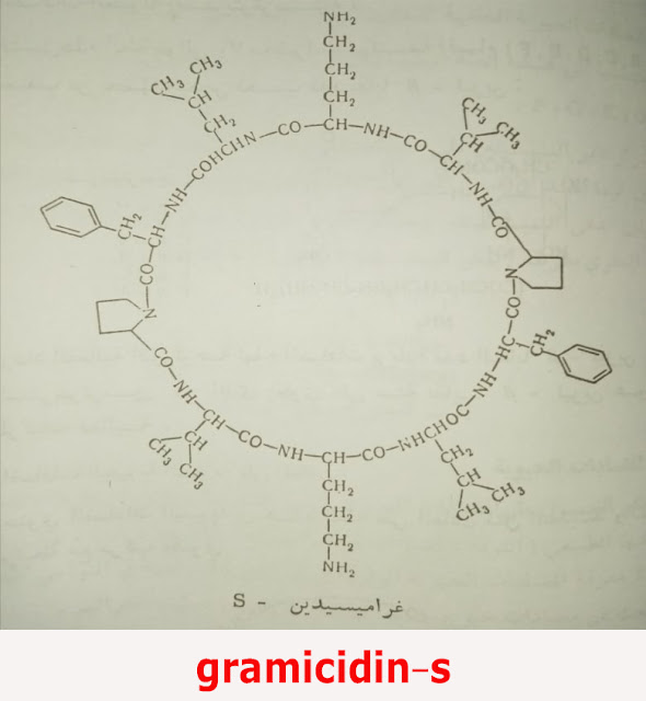 gramicidin-s Polypeptide antibiotics