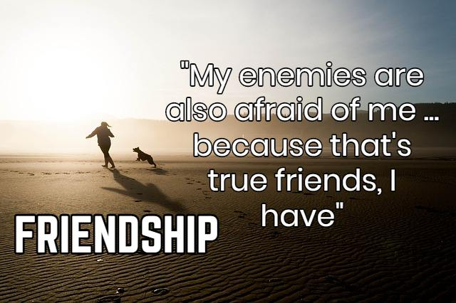 20+ New Friend Zone Quotes In English