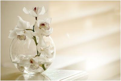 Orquídea em um vaso de vidro com água