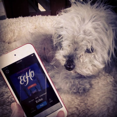 Murchie lies in a fuzzy, cream-coloured dog bed. Beside him, a pale hand holds a white iPod with Echo's cover on its screen. The deep blue cover features the silhouettes of three children in a winter forest.