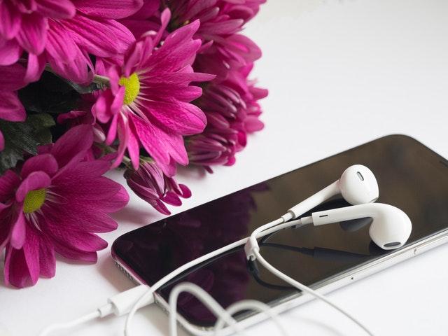 headset earbud samsung