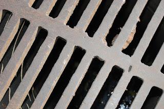 Esgoto Sistema de controle de pragas urbanas é regulamentado em PL.