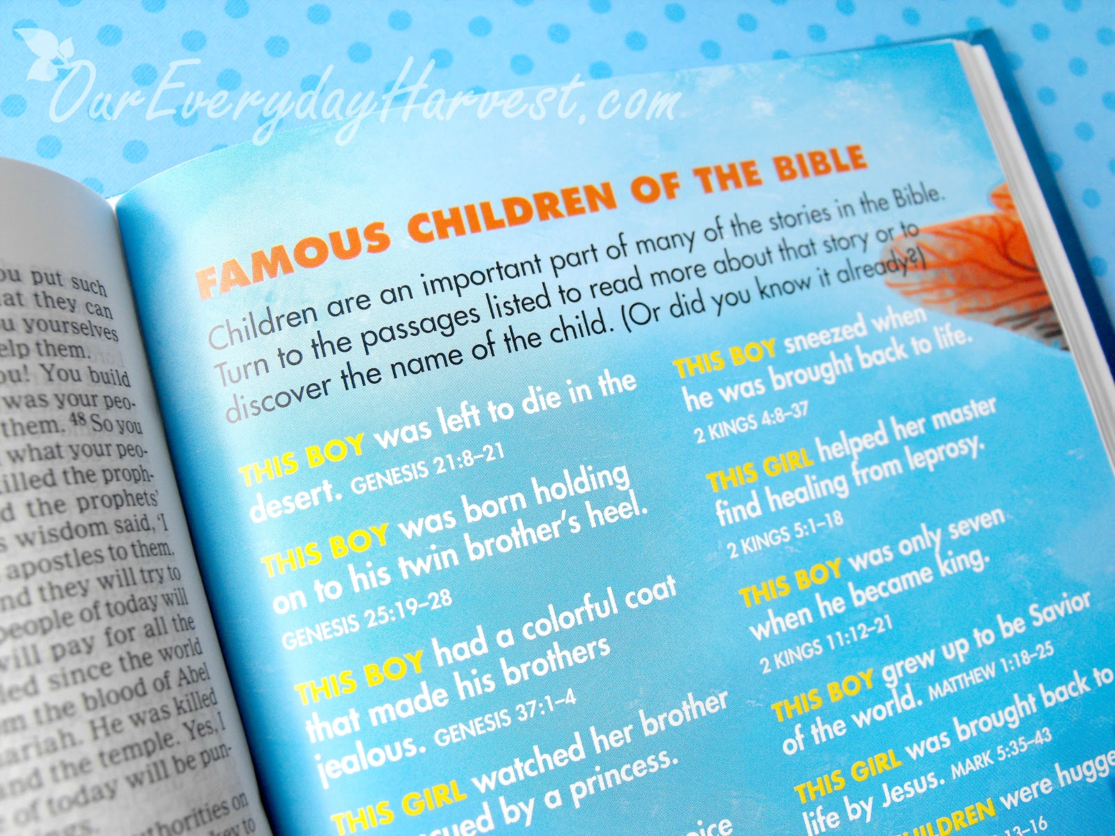 Under the Sea Holy Bible Review + Giveaway | Our Everyday
