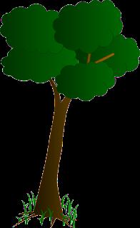 https://1.bp.blogspot.com/-Wi8aasmw7yk/WyCKLmjPudI/AAAAAAAAFrI/Un2G-gDbtKo1YcF6Xqdut_ZJJdHj_wU_wCKgBGAs/s320/Tree01.png