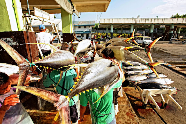 Tuna Capital of the Philippines