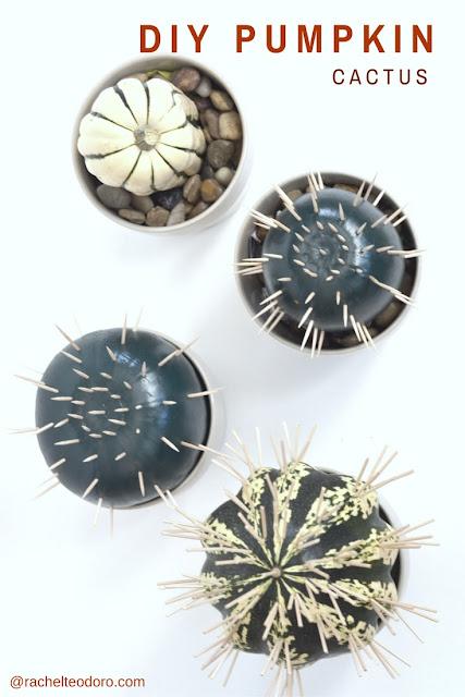 handmade, cacti, succulent, Halloween, fall, modern