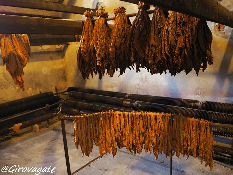 san giustino museo tabacco
