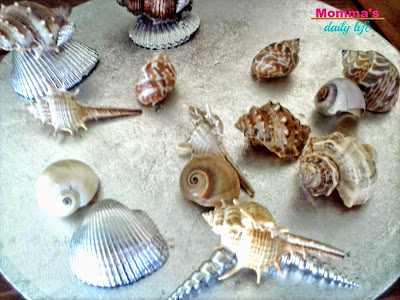diy seashells