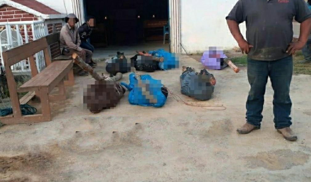 Masacre en Copanatoyac; Guerrero, encuentras los cuerpos de 7 campesinos ejecutados
