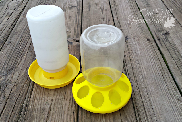 Chick feeder and waterer