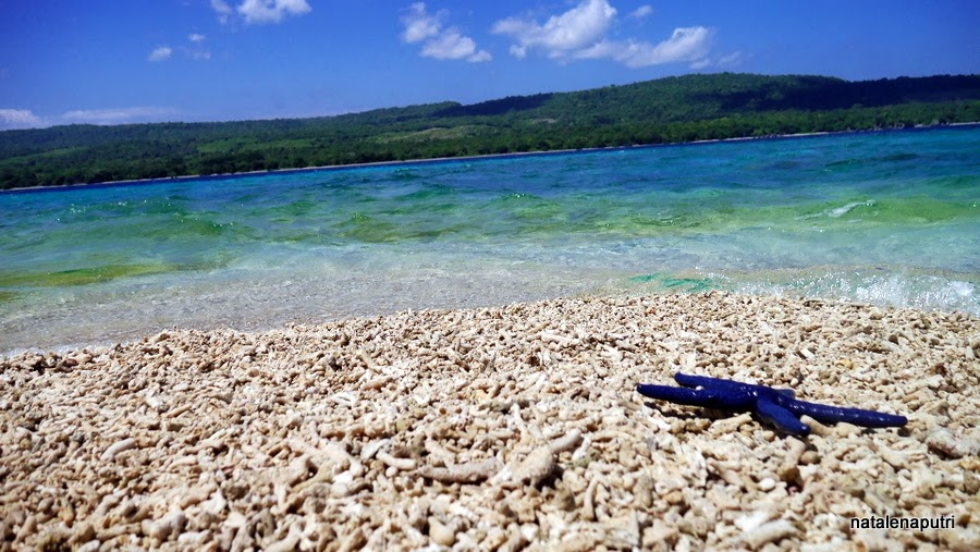 Takat Sagele Pulau Moyo
