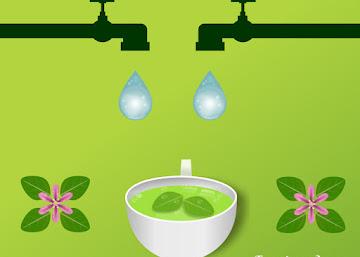 Receita Diurética: Chá de Sete Sangrias