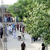 8-Year-Old Pakistani Boy Faces Death Penalty for Urinating in Religious School Library