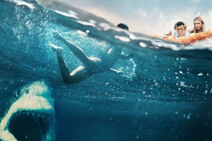 Рецензия на фильм «В пасти океана» («Большая белая») - очередной скучный акулохоррор
