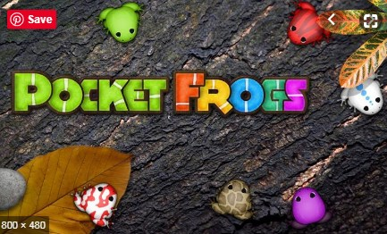 Pocket Frogs Apk Free on Android Game Download